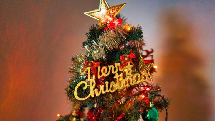 意外と知らないクリスマスツリーの正しい処分方法|燃えるゴミ?粗大ゴミ?